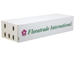 Flower Carton