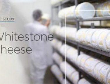 Chilltainer - Whitestone Cheese